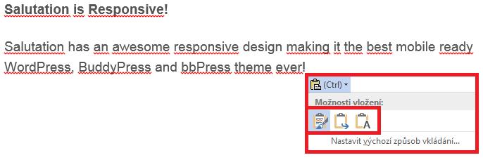 Word - Formátování podle zdroje, cíle, pouze text